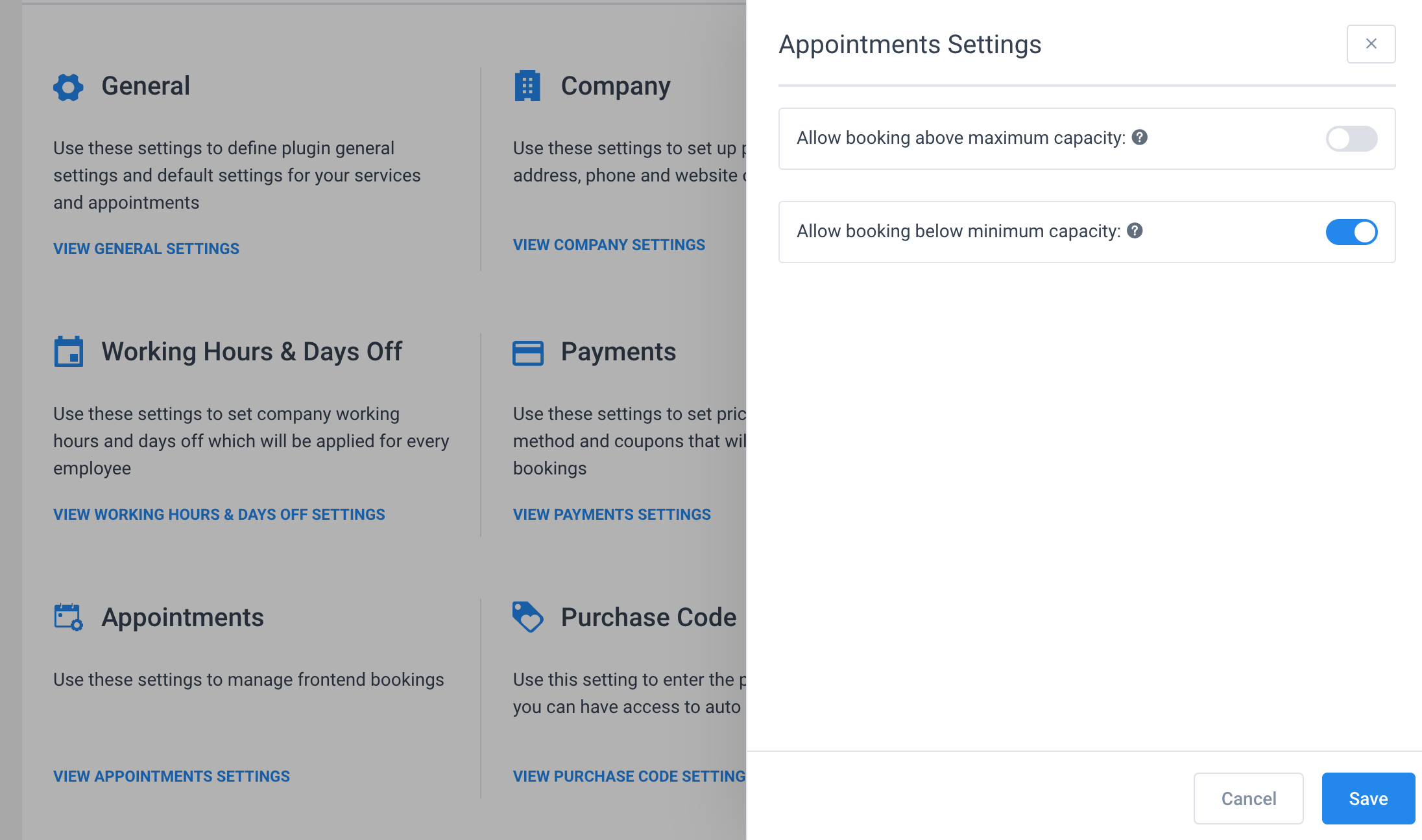 Appointment Settings Amelia WordPress Booking Plugin